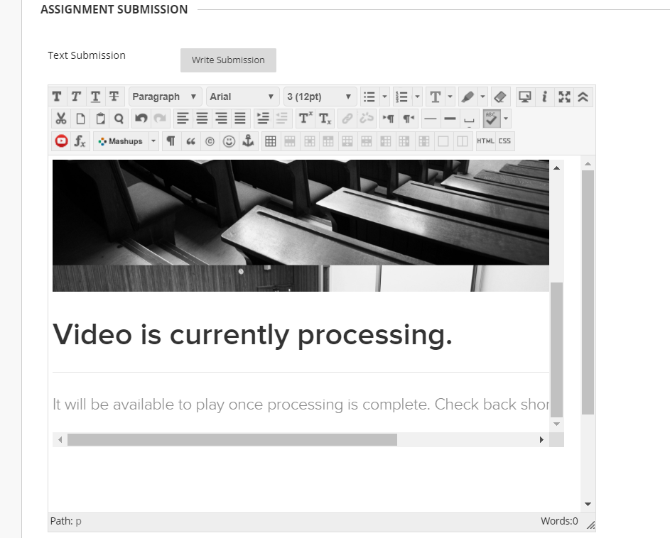 Assignment text submission content window with selected video embedded as described