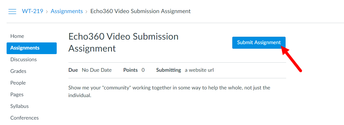 Student view of Echo360 video assignment with Submit Assignment button identified as described